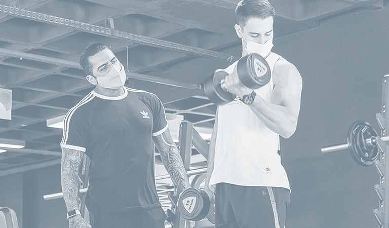 bonus-biceps
